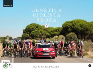 vdm55-skoda-ciclismo